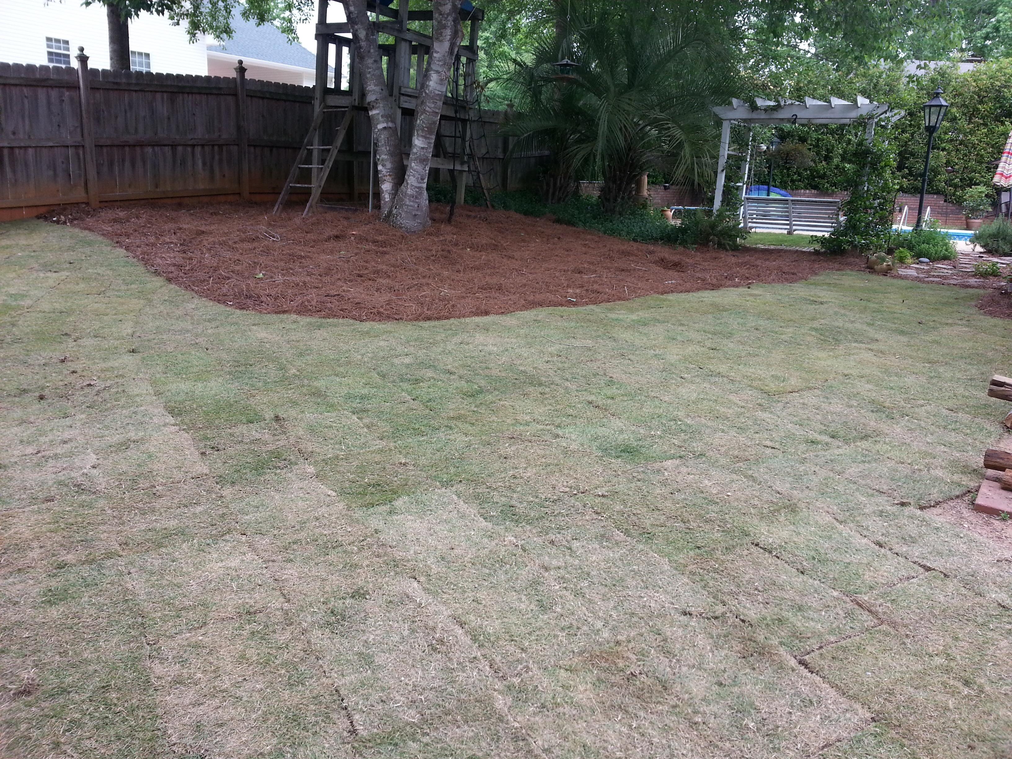 top soil and sod installation u2013 dalmatian lawn u0026 landscaping