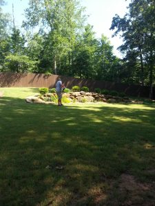 grass cutting & lawn maintenance